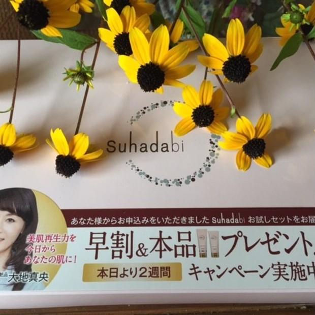 銀座ステファニー化粧品 トライアルセット