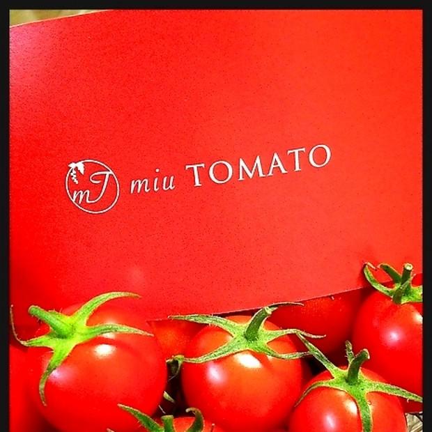 私のお気に入り!優しい甘みの絶品トマト