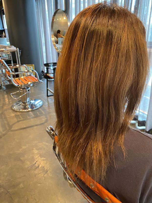 髪の毛 髪 ヘア ヘアスタイル 女性 美容院
