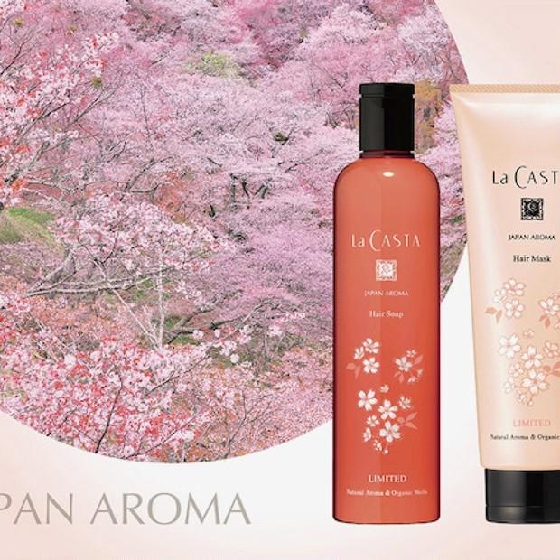 ラ・カスタの桜には毎年テーマがある。今年の桜のテーマは「山桜」