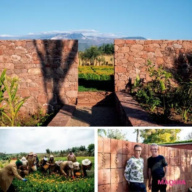 【クリーンビューティ】イヴ・サンローラン・ボーテゆかりの地に農園を創設