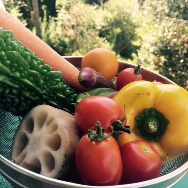 夏バテと美肌対策に!絶品♥超簡単ドライフルーツ&野菜の作り方