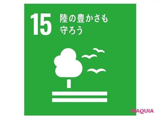 【クリーンビューティ】15のLife on Land「陸の豊かさも守ろう」は、森林や山、川、湖などの自然環境や生物の多様性を守ることを掲げている。
