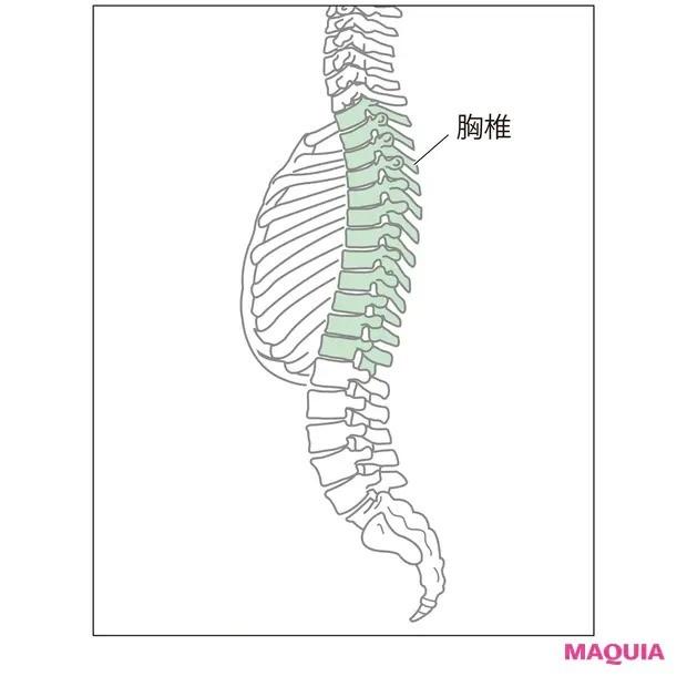【ウエストのくびれの作り方】ガチガチの背骨をねじって柔軟に「胸椎ストレッチ」_1