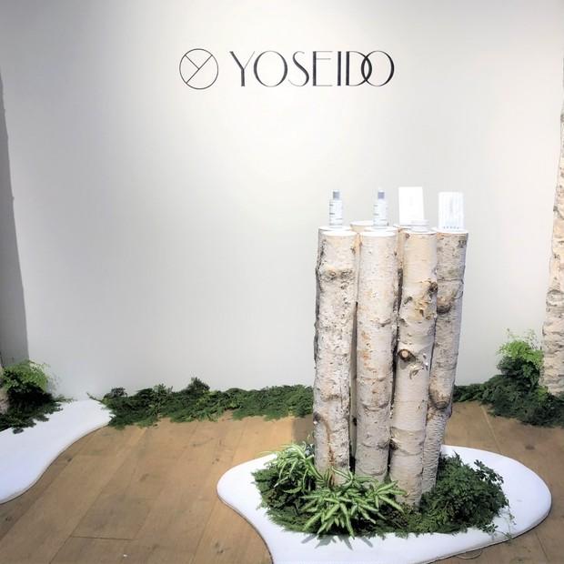 """白樺樹液100% のナチュラルスキンケアブランド""""YOSEIDO""""デビュー"""