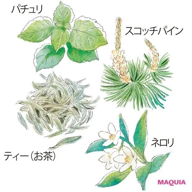 【人気の香水】心に効く精油と香水の選び方_気分をリセット