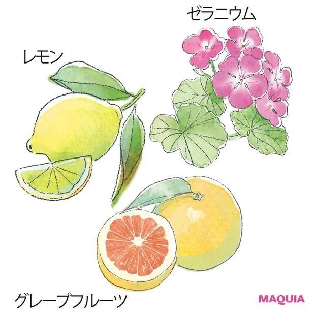 【人気の香水】心に効く精油と香水の選び方_気分を上げる