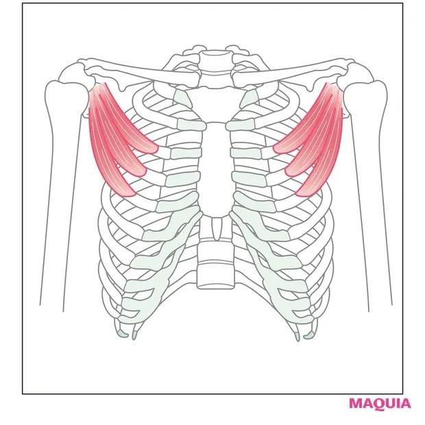 【ウエストのくびれの作り方】背中側にもしっかり息が入るように「胸前ストレッチ」_1