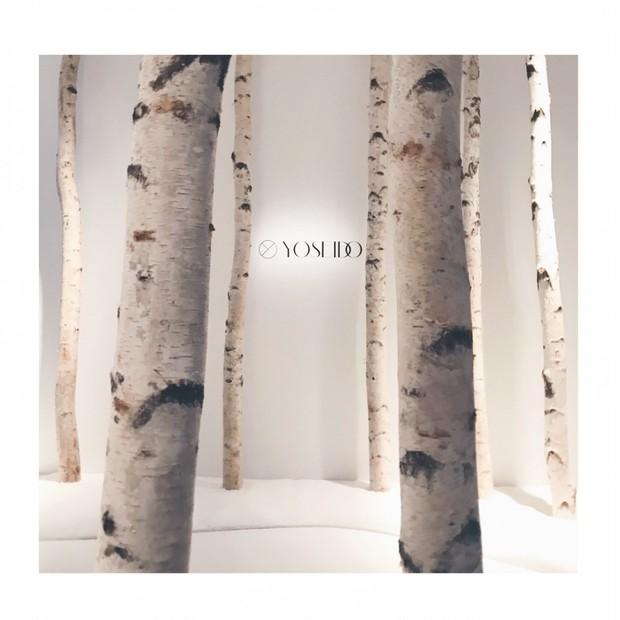 【YOSEIDO】白樺樹液100%のナチュラルスキンケアが誕生!内側からふっくらしっとり肌に☆