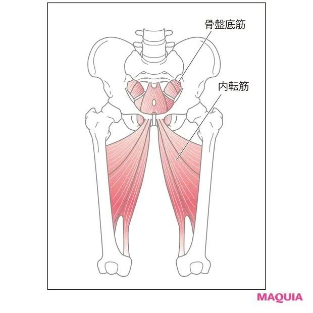 【ウエストのくびれの作り方】ふたつの筋肉にアプローチ「内ももストレッチ」_1