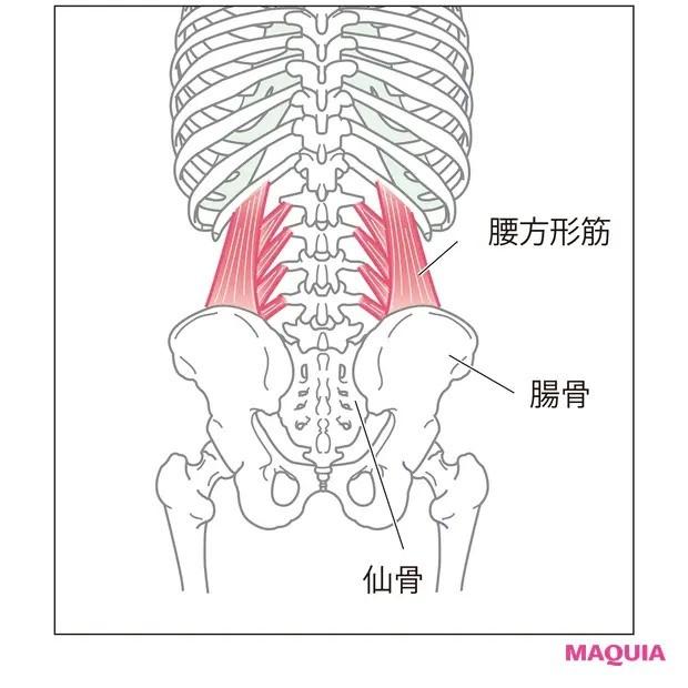 【ウエストのくびれの作り方】背中側のインナーマッスルを刺激「腰周りほぐし」_1