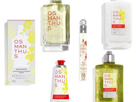 ロクシタンから金木犀の香り「オスマンサス シリーズ」が新登場! 魅惑的で甘美な新フレグランスやハンドクリームほか全5品