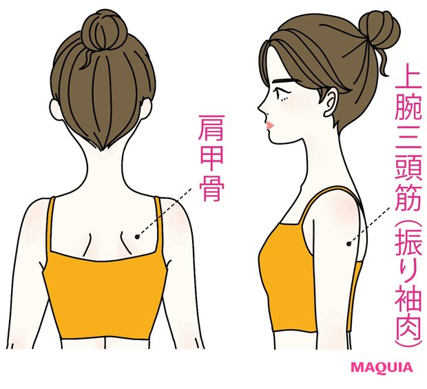 二の腕太りの原因は 肩甲骨周りを 動かしていないから