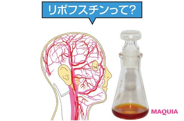 肌をにごらせる血管の「茶渋」