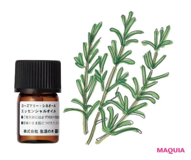 ローズマリー・シネオール精油 3mL ¥660/生活の木