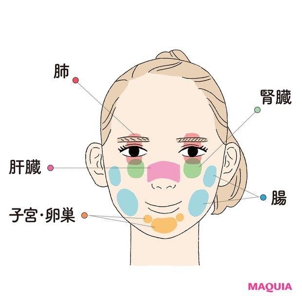 臓器からのメッセージが現れやすい顔の反射区