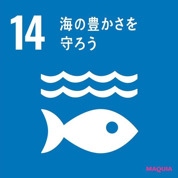 Life Below Water「海の豊かさを守ろう」
