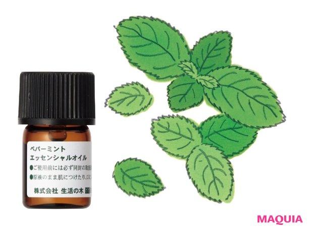 ペパーミント精油 3mL ¥660/生活の木
