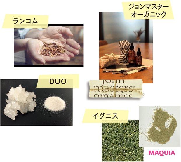 サステナブルビューティを考える連載『MAQUIA CLEAN BEAUTY NAVI』。環境に還元できるエシカルな仕組みとは?_6