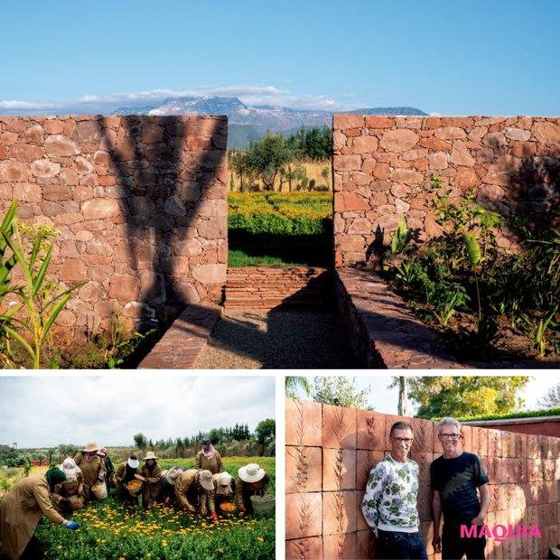 イヴ・サンローラン・ボーテゆかりの地に農園を創設