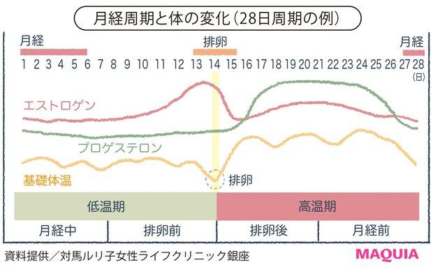月経周期と体の変化(28日周期の例)