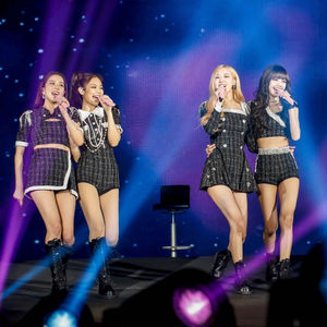 「BLACKPINK 2019-2020 WORLD TOUR IN YOUR AREA」日本公演